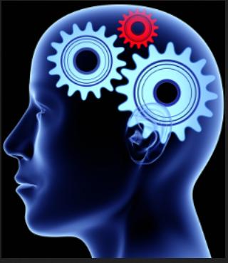 brain gears 5555