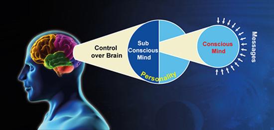 brain pic-2